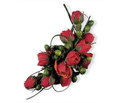 Corsages For Homecoming Prom Corsages U0026 Boutonnieres Delivery Chicago Il Prost Florist