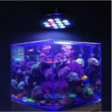 led aquarium lights for reef tanks free shipping 5pcs lot 12w led aquarium spot light for live coral