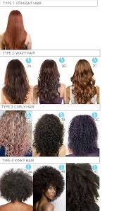 2a hair curl type guide curls with attitude