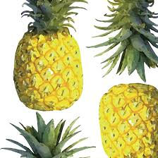 pineapples wallpaper katie kime