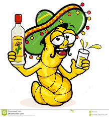 margarita cartoon cantaritos mexican cocktail stock vector image 52113915