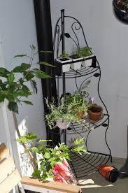 krã uter balkon arctar küche kräuter wand