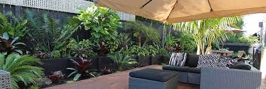 magnificent subtropical garden ideas and also pleasing tropical