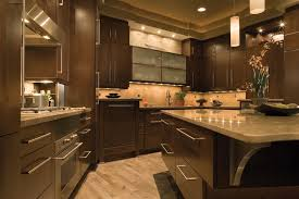Mocha Kitchen Cabinets by Alectra Cabinetry