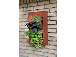 grovert living wall planter paintable wood frame
