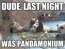 Night Meme - dude last night was pandamonium misc quickmeme