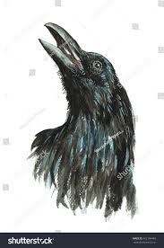 halloween background crow crow isolated watercolor painting on white stock illustration