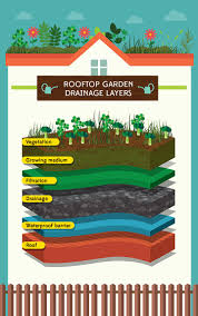 Best Flowers For Vegetable Garden by Raise The Roof How To Plant A Rooftop Garden Gardening