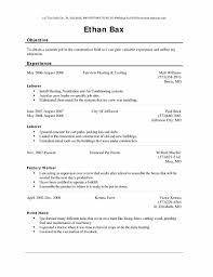 Sample Resume Objectives Of Service Crew by Example And Writing Download Objective Statement Customer Service