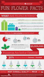 christmas 2012 fun flower facts infographic u2013 infographic list