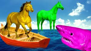 film kartun ikan hiu perang melawan ikan hiu vs kuda kartun dinosaurus film
