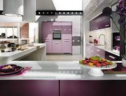 Purple Kitchen Cabinets Modern Kitchen Color Schemes 37 Best Purple Kitchens Images On Pinterest Urban Kitchen