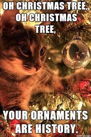 Christmas Memes - christmas 2015 best funny memes heavy com page 15