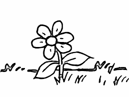 flower preschool coloring pages for autumn flower coloring pages