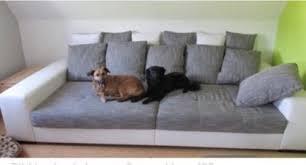 big sofa roller mr big big sofa aus dem roller in baden württemberg hausach