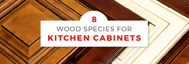 how to stain unfinished maple cabinets guide to kitchen cabinet wood types