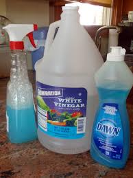 Cleaning Glass Shower Doors With Vinegar My Great Challenge White Vinegar In The Kitchen