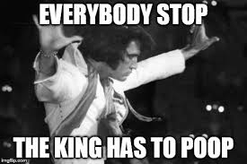 Stop Meme - elvis stop meme generator imgflip