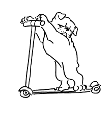 dr bulldog on a skateboard
