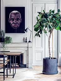 maison home interiors how to choose the plant for your home interior vogue