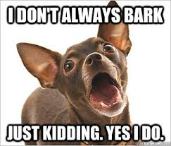 Dog Barking Meme - i dont always bark just kidding yes i do wish this was a pic of a