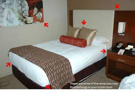 the proper way to make a bed inspecting your hotel room for bed bugs let u0027s beat the bed bug