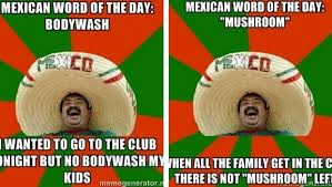 Mexican Word Of The Day Meme - 17 funny mexican word of the day meme images greetyhunt