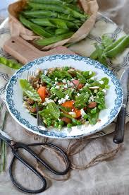 cuisiner des pois mange tout salade de pois mange tout abricot et céréales recette tangerine