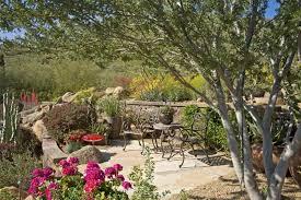 desert landscape ideas for front yard tips for desert landscape