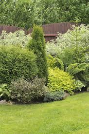 Shrub Garden Ideas 38 Clever Backyard Shrub Garden Ideas Shrub Gardens And Garden