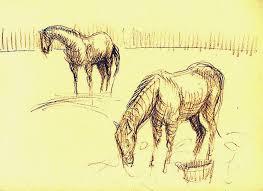 another sketch of horses u2026 van gogh and i