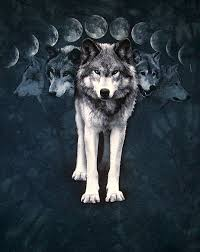 wolf moon cycle by rentiger on deviantart
