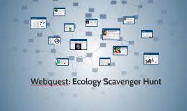 webquest ecology scavenger hunt by khalila sailor on prezi