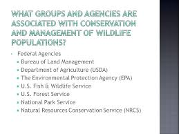 bureau service national ag wl 2 federal agencies bureau of land management department