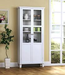 shallow wall cabinets with doors luxury shallow cabinet with doors medium size of storage cabinet