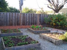 what to grow in a vegetable garden ten tips for vegetable gardening during a drought green blog