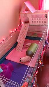 How Much Is A Hamster Cage 130 Best For The Animals Cages U0026 Larger Projects Images On
