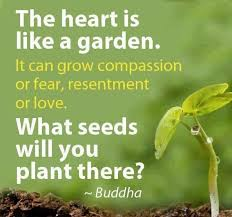 wedding quotes buddhist 590 best buddha quotes images on buddha quote