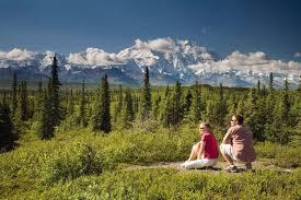 Alaska national parks tour by bus rail denali kenai fjords