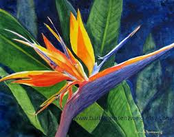 birds of paradise flower tropical flower print bird of paradise flower