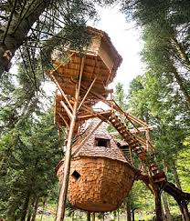 chambre d hote cabane dans les arbres cabane dans les arbres dormir dans les arbres hotels insolites com