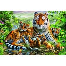 tiger and cubs variant 3 rolled canvas adrian chesterman 18