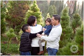 Santa Cruz County Christmas Tree Farms by Rodriguez Tree Farm Mini Orange County Newborn Photographer