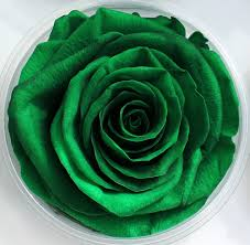 teal roses preserved roses and wholesale florist