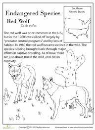 4th grade animal adaptations worksheets 4th grade free
