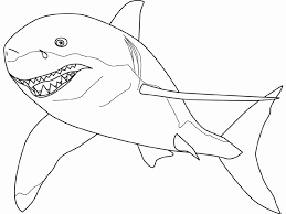 Free Shark Coloring Pages Coloring Pages Sharks Printable