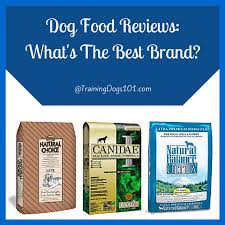 dog food reviews what u0027s the best brand training dogs 101 com