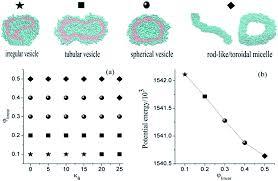 spontaneous onion shape vesicle formation and fusion of comb like