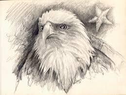eagle head pencil kim pearce paintings u0026 drawings