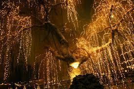 light tree pertamini co